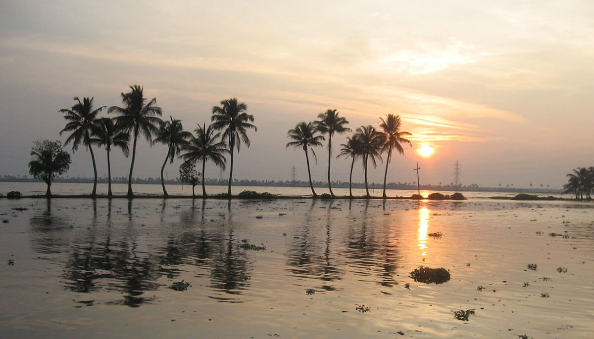 At the end of the day, this is the sunset you have to look forward to in the Kerala backwaters