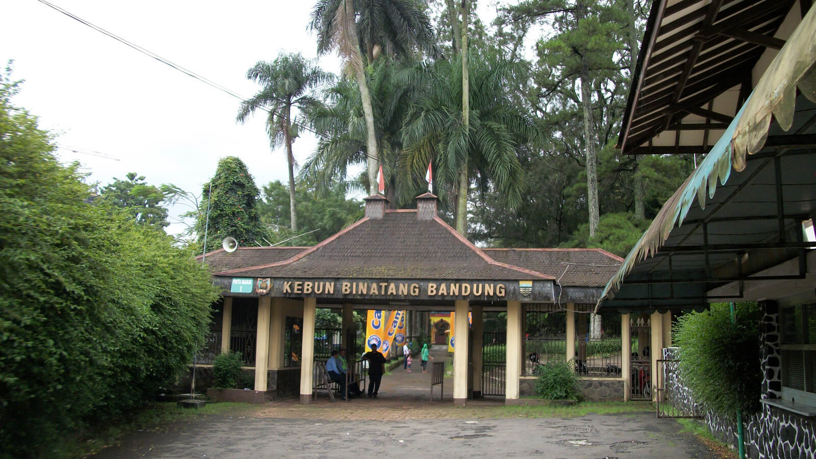 Kebun Binatang Bandung: The Most Depressing Zoo Ever? - The HoliDaze