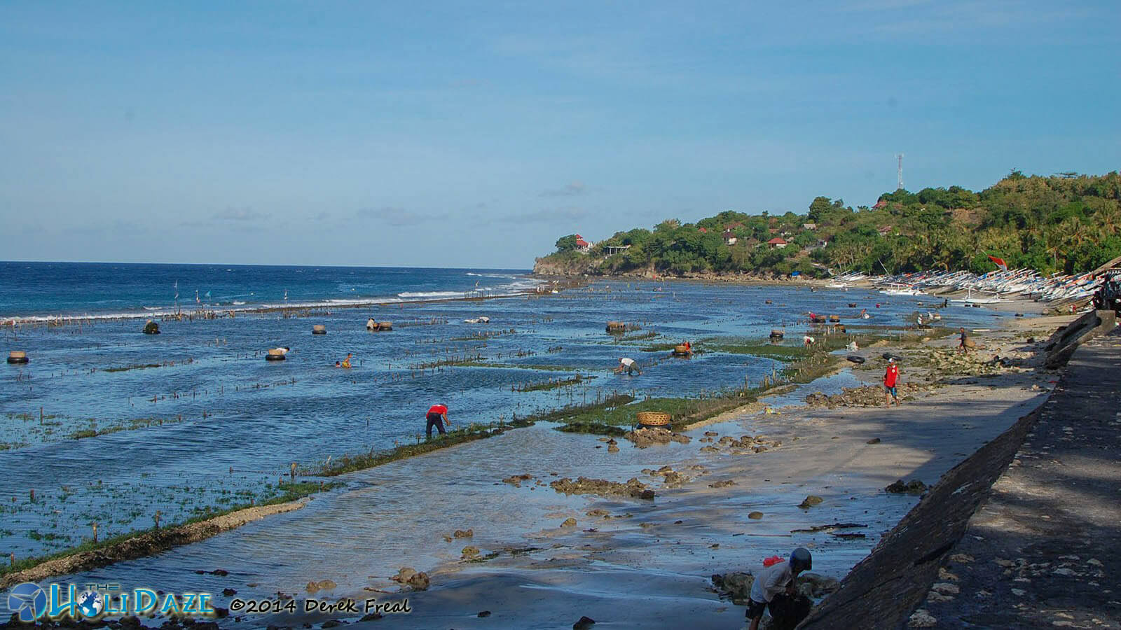 Seaweed farming on the north shore of Nusa Penida island, Bali's hidden paradise