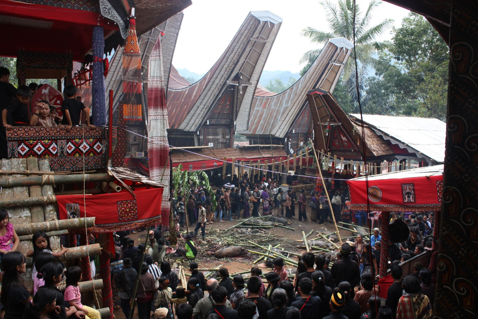 A Torajan funeral can last for weeks! Definitely one of the unique and one of a kind offbeat Indonesia destinations and activities to add to your to-do list