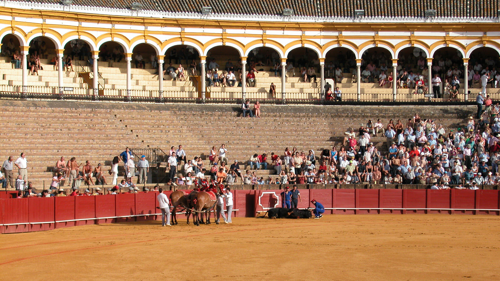Tons of spectators ready to see a bullfight in Requena, Spain!