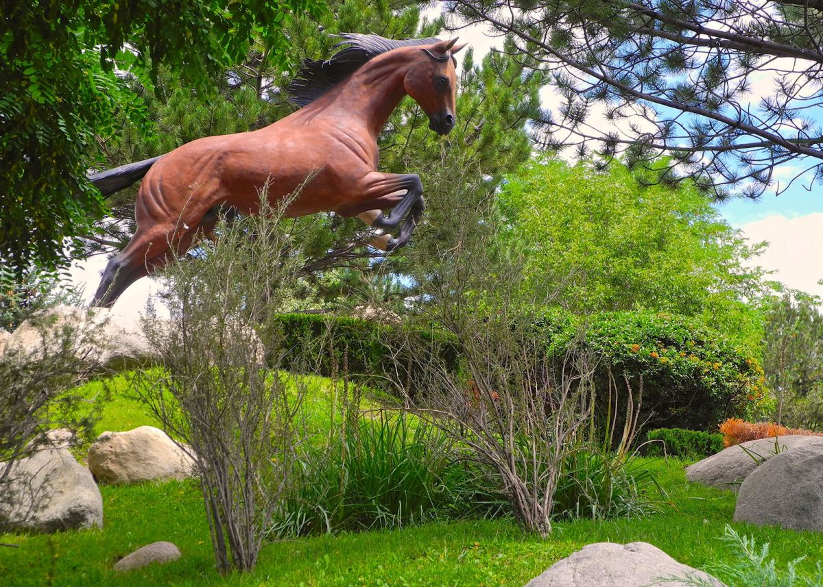 The Museum Of The Horse is one of the many unique and offbeat things to do in Ruidoso, New Mexico