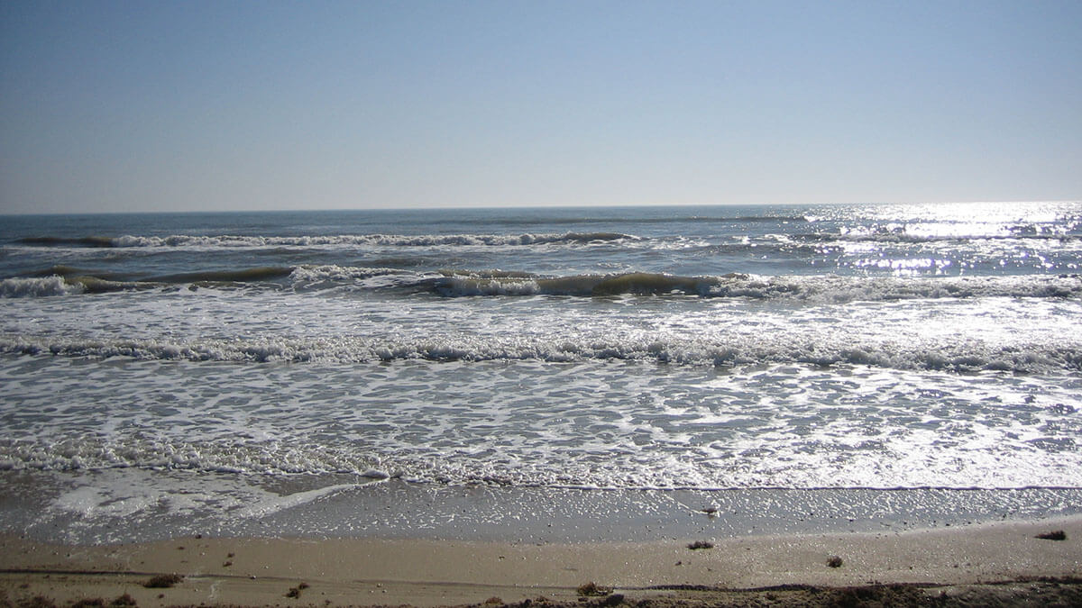 Escape Corpus Christi with a day-trip to Padre Island National Seashore in Texas