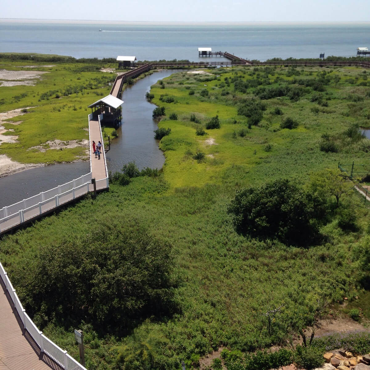 South Padre Island Birding and Nature Center, one of the unique and overlooked offbeat South Padre Island activities