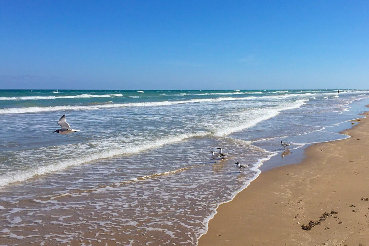 The beach at Andy Bowie Park is one of the overlooked South Padre Island activities