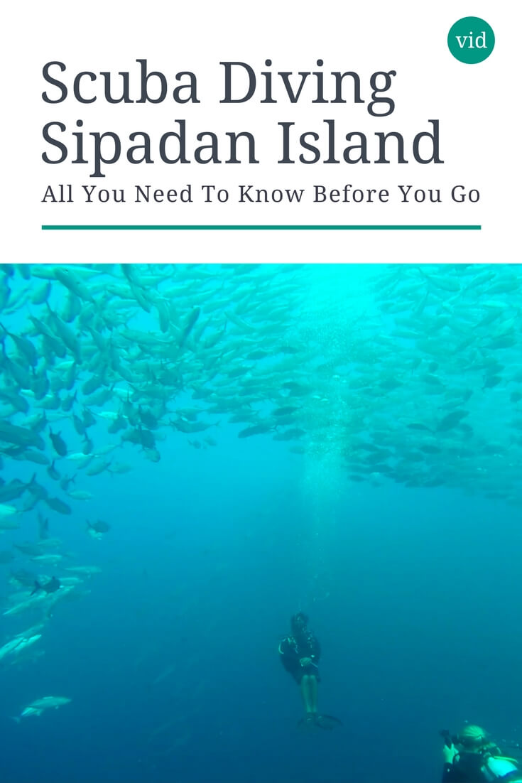 Scuba diving Sipadan Island should be on every diver's bucket list!