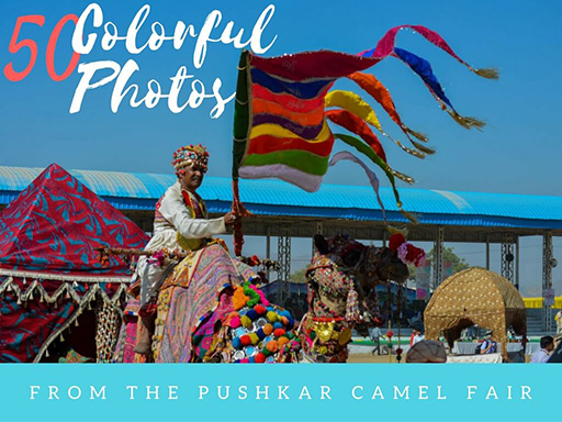 50 colorful photos from the Pushkar Camel Fair in India