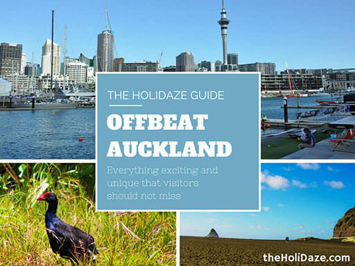 Offbeat Auckland Travel Guide and Activities