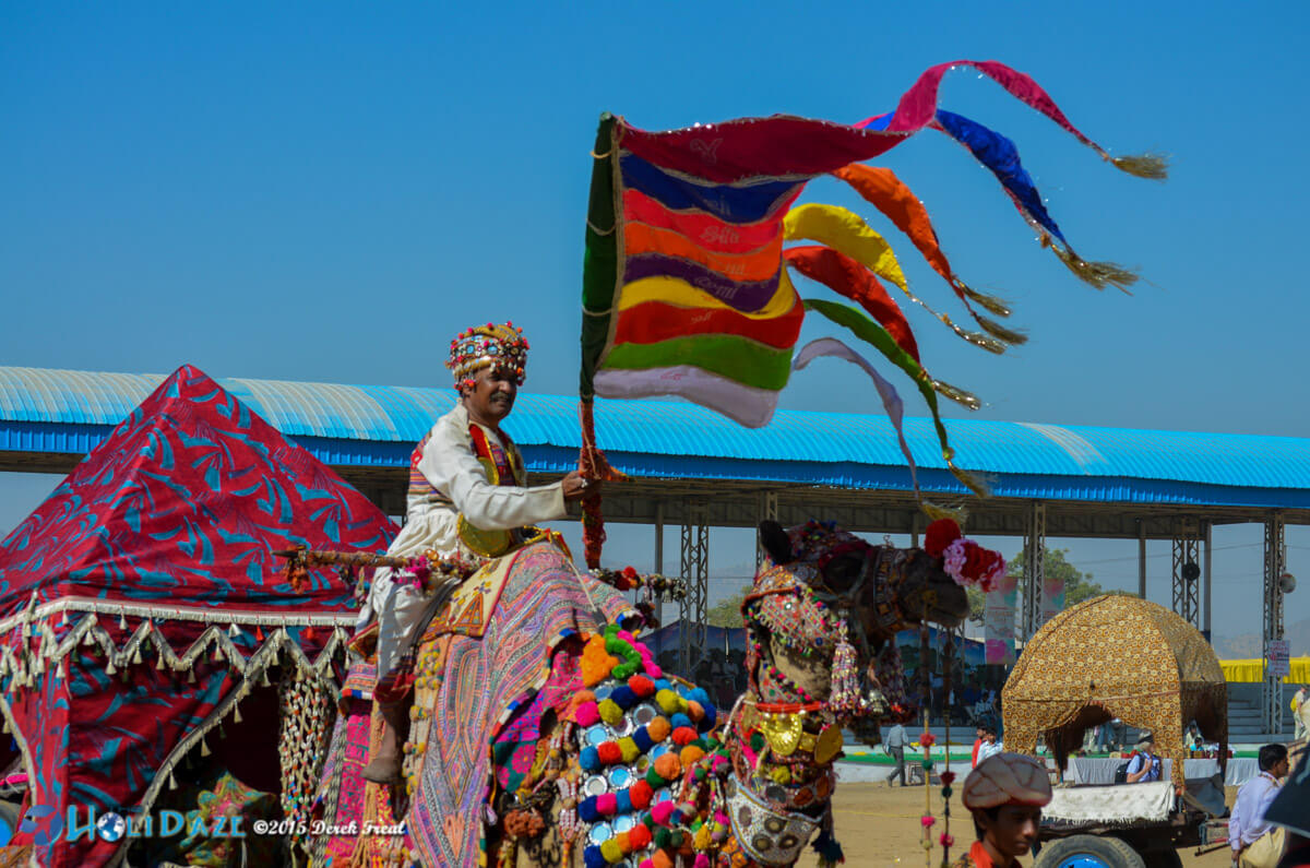 Ashok Tak, camel decoration winner and promotor of cultural heritage at the Pushkar Camel Fair 2015