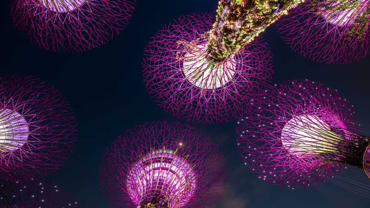 The solar-powered supertrees of Gardens by the Bay, Singapore