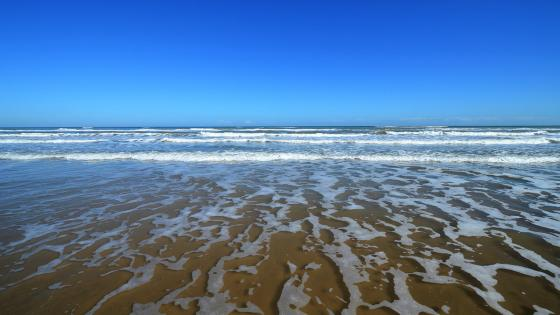 Offbeat South Padre Island Sights And Destinations