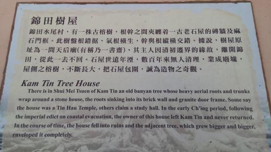 Kam Tin Tree House in Shui Tau, Yuen Long, Hong Kong