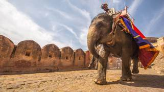 Elephant ride entrance to the Amber Palace in Jaipur, India, a UNESCO World Heritage Site