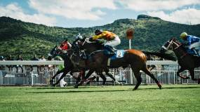 The Best Travel Destinations for Horse Races