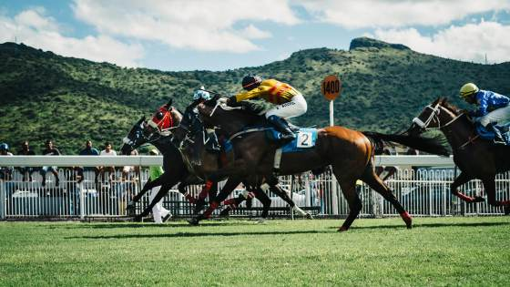The Best Travel Destinations for Horse Races