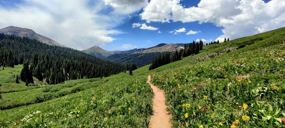 Hiking Solo – Here Is All You Need To Know