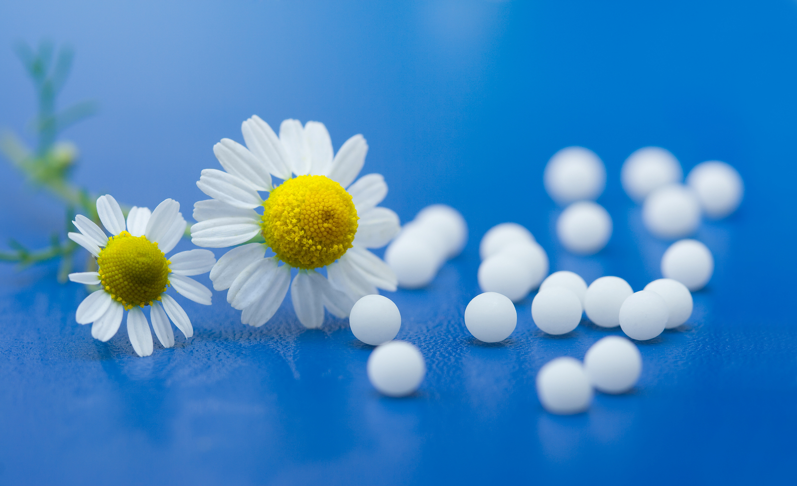 homeopathy and infertility