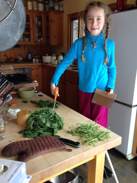 Believe it or not, Quill grows, harvests and handles all her own nettle bare handed!