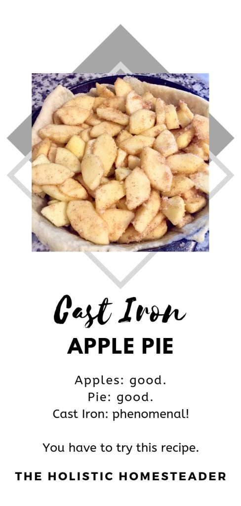 Cast Iron Apple Pie