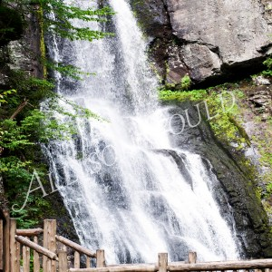 Bushkill Falls Wall Decor