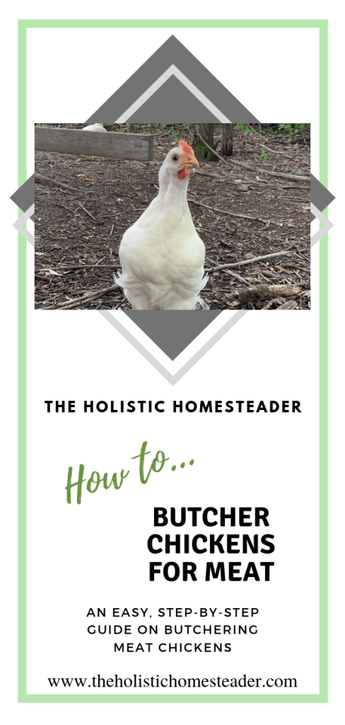 How to Butcher Chickens for Meat
