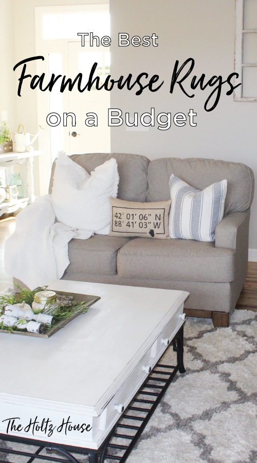 6 Best Farmhouse Rugs On A Budget The Holtz House
