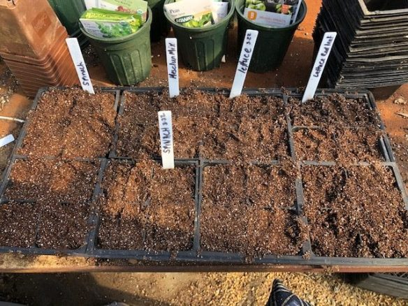 8 four-inch pots fit in one germination tray.