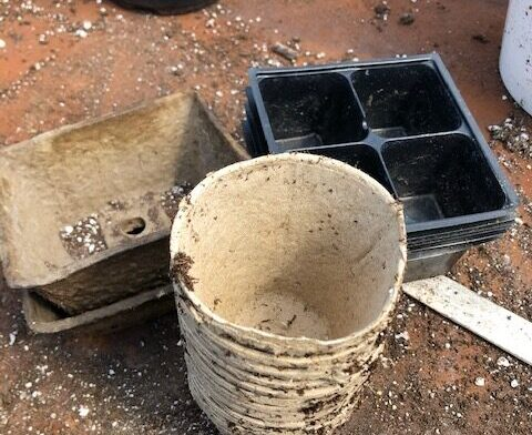 four inch pots for starting seeds