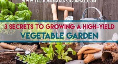 3 Secrets to Growing a High-Yield Vegetable Garden