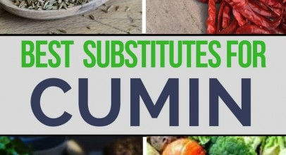 What Are the Best Cumin Substitutes for Cooking