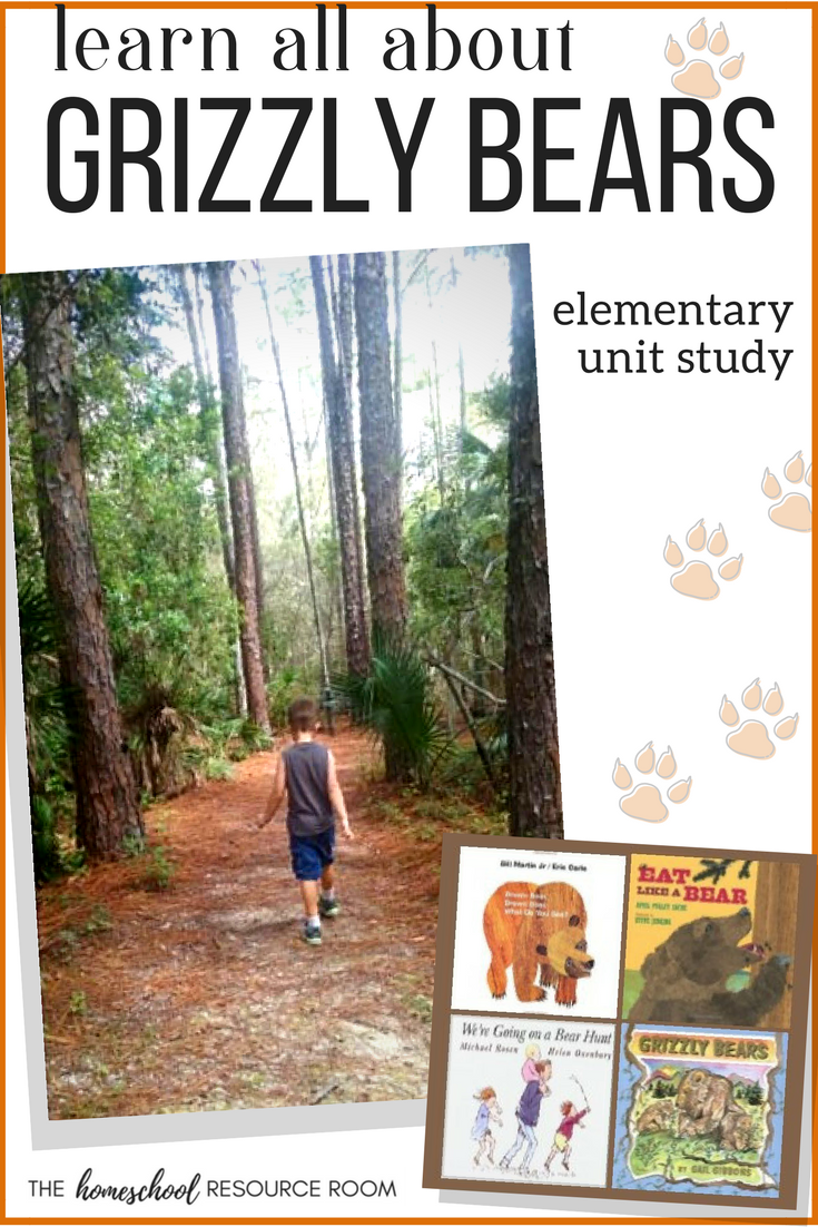 Grizzly bear facts for kids - an elementary unit study on the North American Grizzly. Books, activities, worksheets, field trip ideas, and media all about the North American Grizzly Bear.