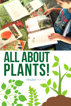 Plants for kids! Book list, activities, and a hands-on guide for an elementary introduction to plants. #elementary #kindergarten #plants #science #stem