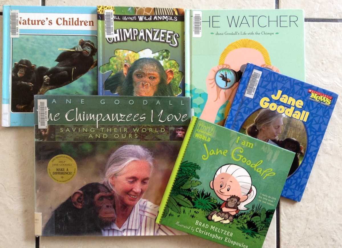 DIY Jane Goodall and Chimpanzee Lapbook and Resources for Elementary Lesson Plans