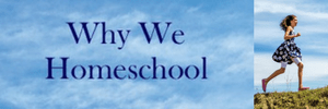 Why We hHomeschool