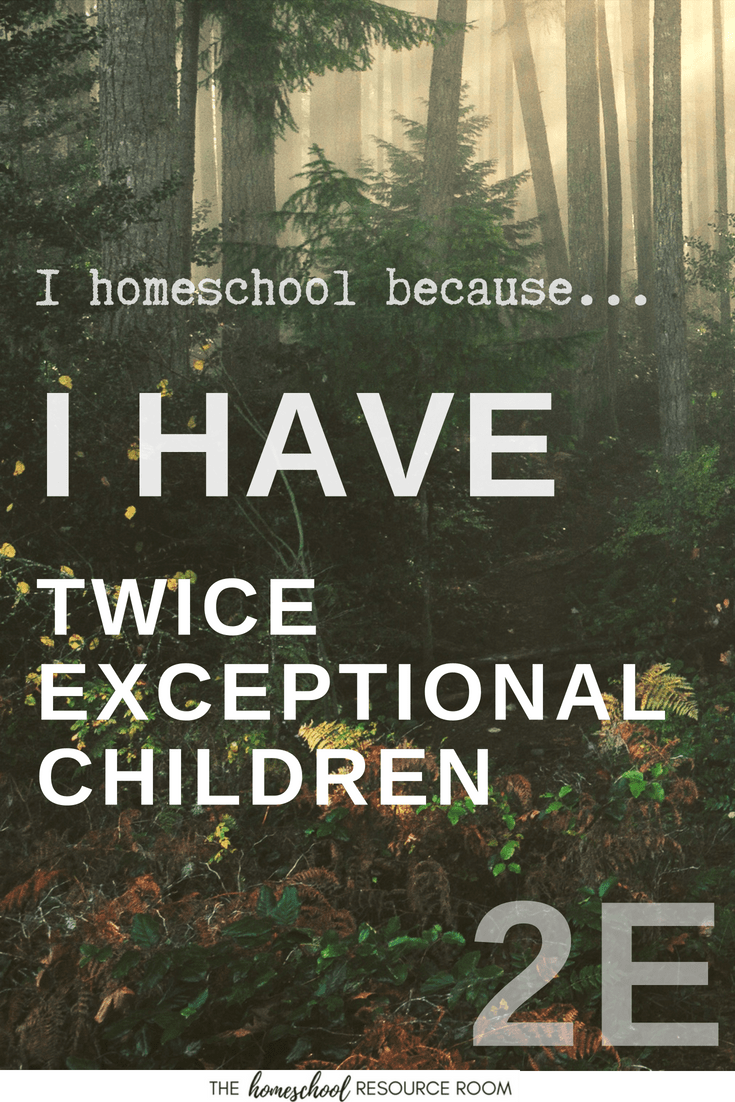 I Homeschool because... My Children are Twice Exceptional.
