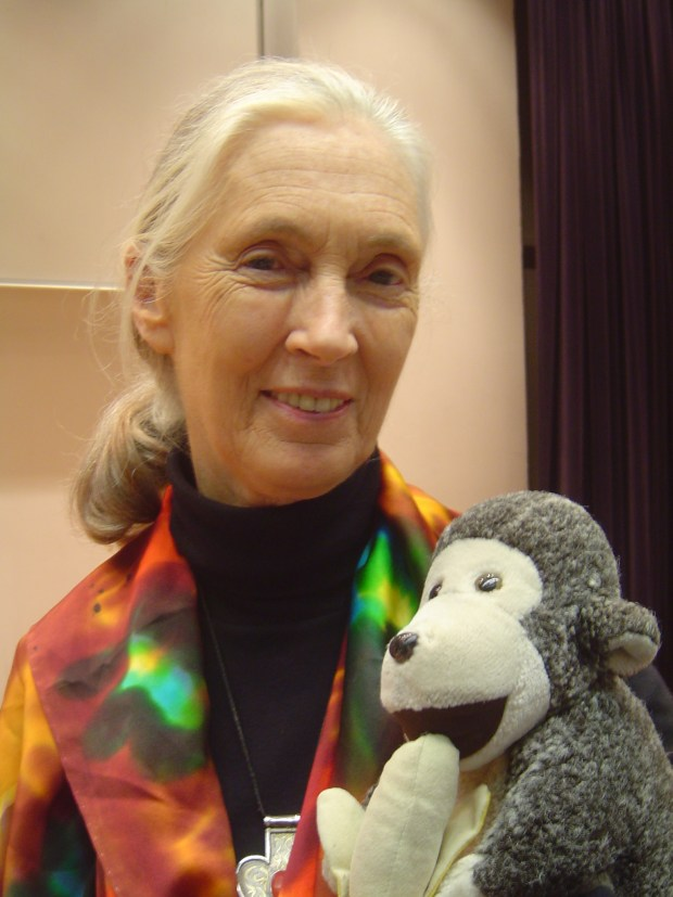 This image has an empty alt attribute; its file name is Jane_Goodall_HK.jpg