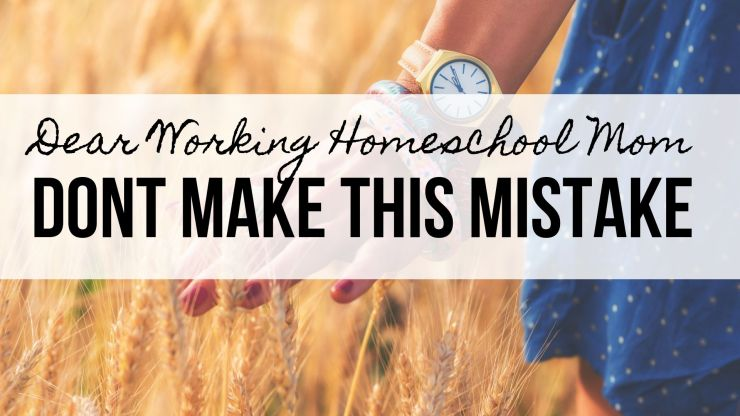 Practical Homeschooling Philosophy, Homeschool Mistakes