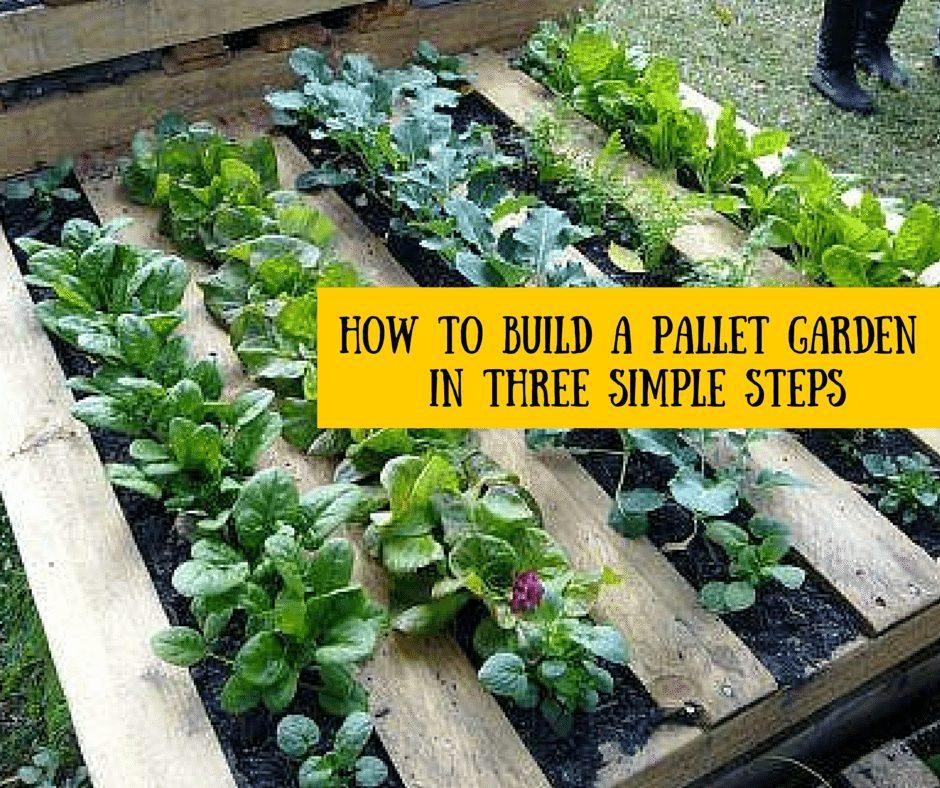 Raised Vegetable Garden Fill