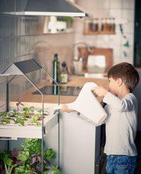 Hydroponic Gardens Go Mainstream at IKEA  Homestead Guru