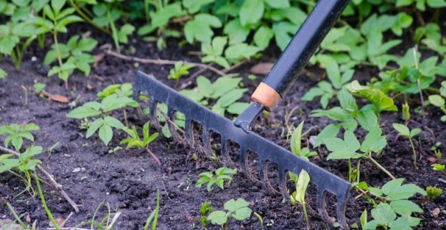 Garden equipment (new)