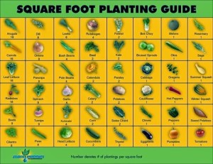 A Gardening Notebook  Thehomesteadingboards
