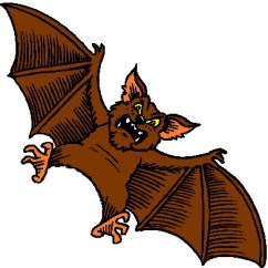 Bat Living Room Color Palettes Ideas What To Do When A Rabid Is Flying Around Your The Clip Art Bats 683324 1