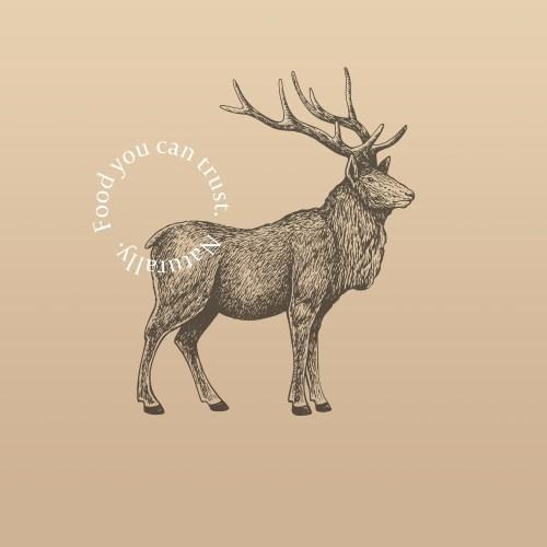 elk meat