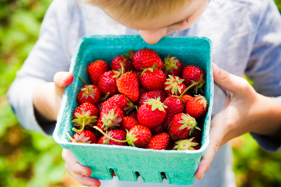 strawberries-12