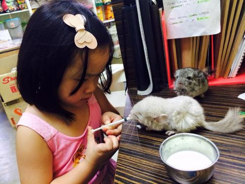 pet shops in Singapore Pets Republic owner