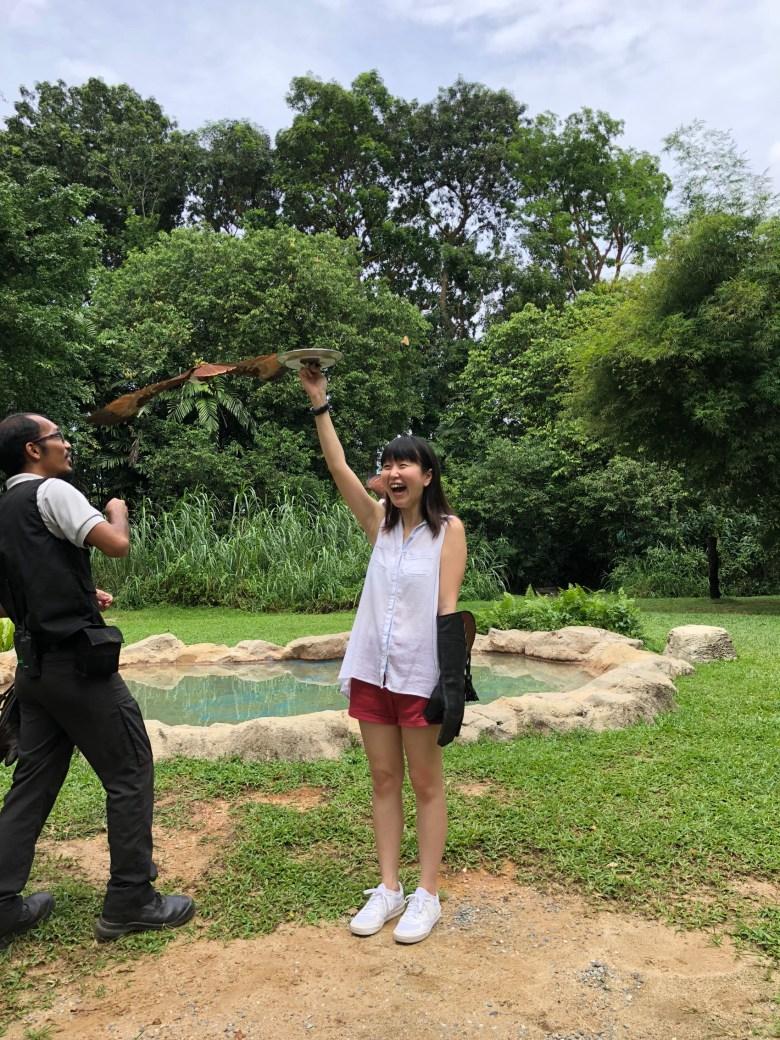 Bird's Eye Tour experience at Jurong Bird Park