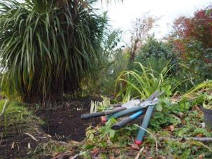 Clearing, dividing, replanting