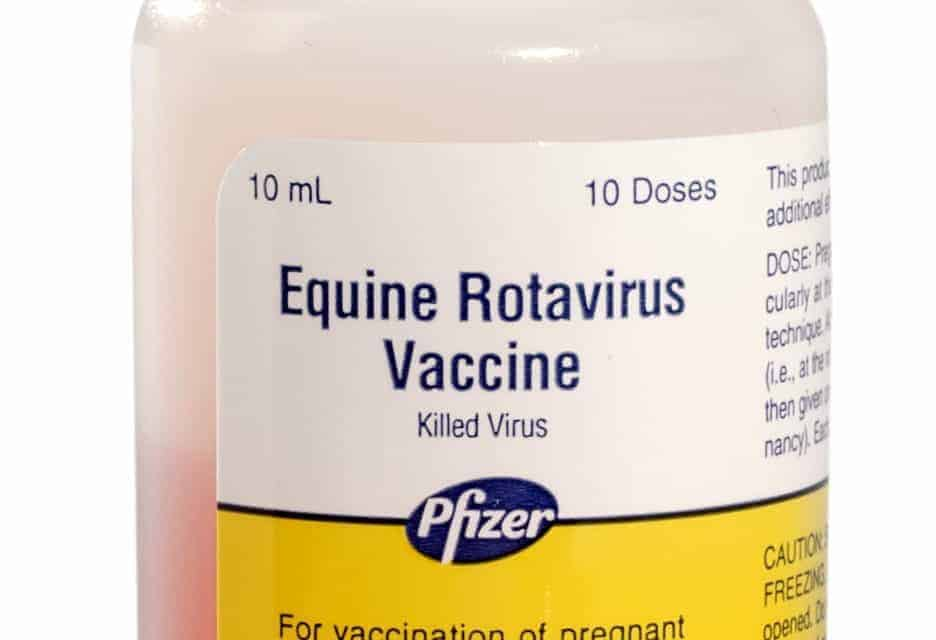 Equine Rotavirus Vaccine Moves to Pfizer Animal Health Label – The ...