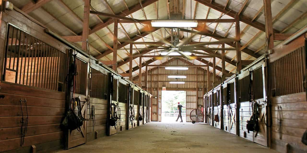 Researchers Develop Online Tool to Help Make Farms Safer  The Horse