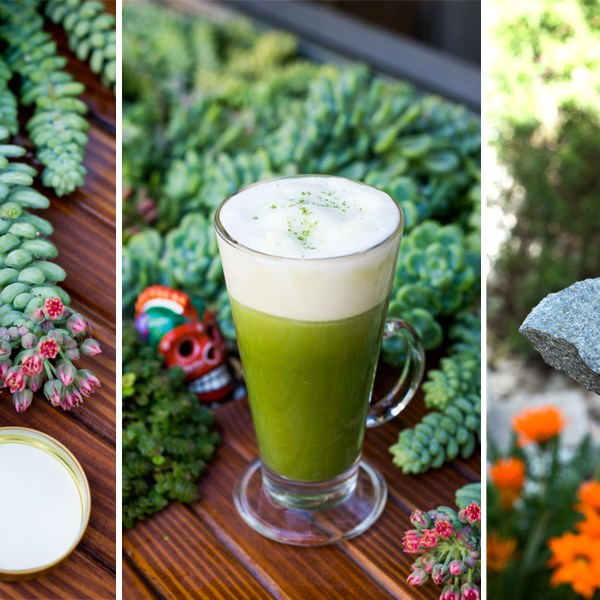We've Been Drinking: Homemade Matcha Lattes in the Morning